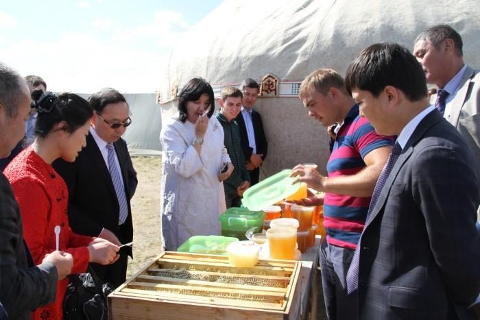 Акмолинский мёд будет поставляться в Китай