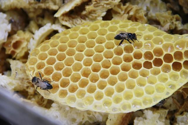 несладкий мёд