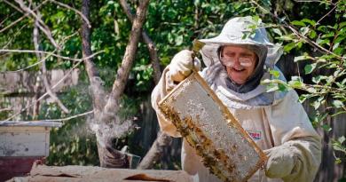 пчеловодство дания