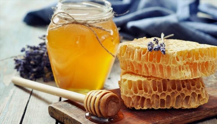 В Северном Казахстане создан кооператив пчеловодов