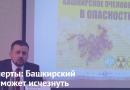 Башкирский мёд может исчезнуть