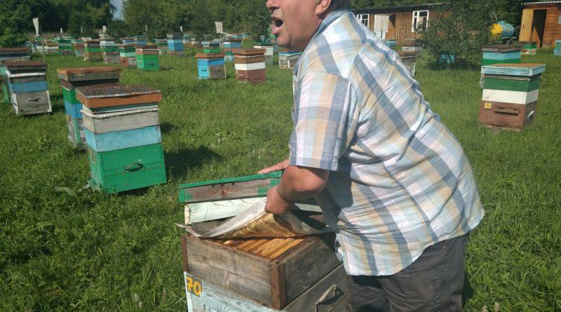 Какими секретами делились друг с другом алтайские и французские пчеловоды?